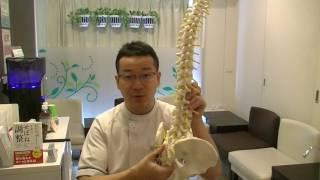 【施術ブレークスルー】腰椎1番と内臓、筋筋膜 thumbnail