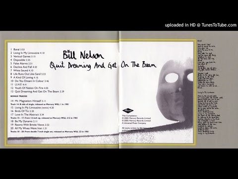 Bill Nelson - Disposible
