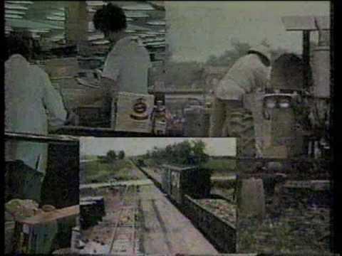 OETA NEWS OPEN - 1985