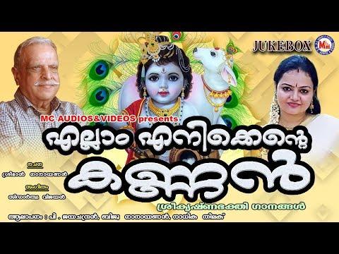 മയിൽപീലിപോലെ മറ്റൊരു ശ്രീകൃഷ്ണ ഭക്തിഗാനം  Hindu Devotional Songs Malayalam  Sree Krishna Songs