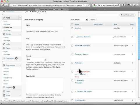 managing-post-categories-in-wordpress-posts