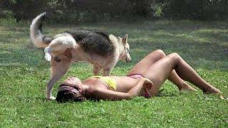 прикольное видео про животных смотреть всем!