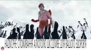 Реклама Гараж/Garage – пингвины 2017