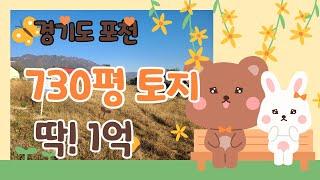 경기도 포천 730평 토지 경매가 1억!!!★신건 감정…