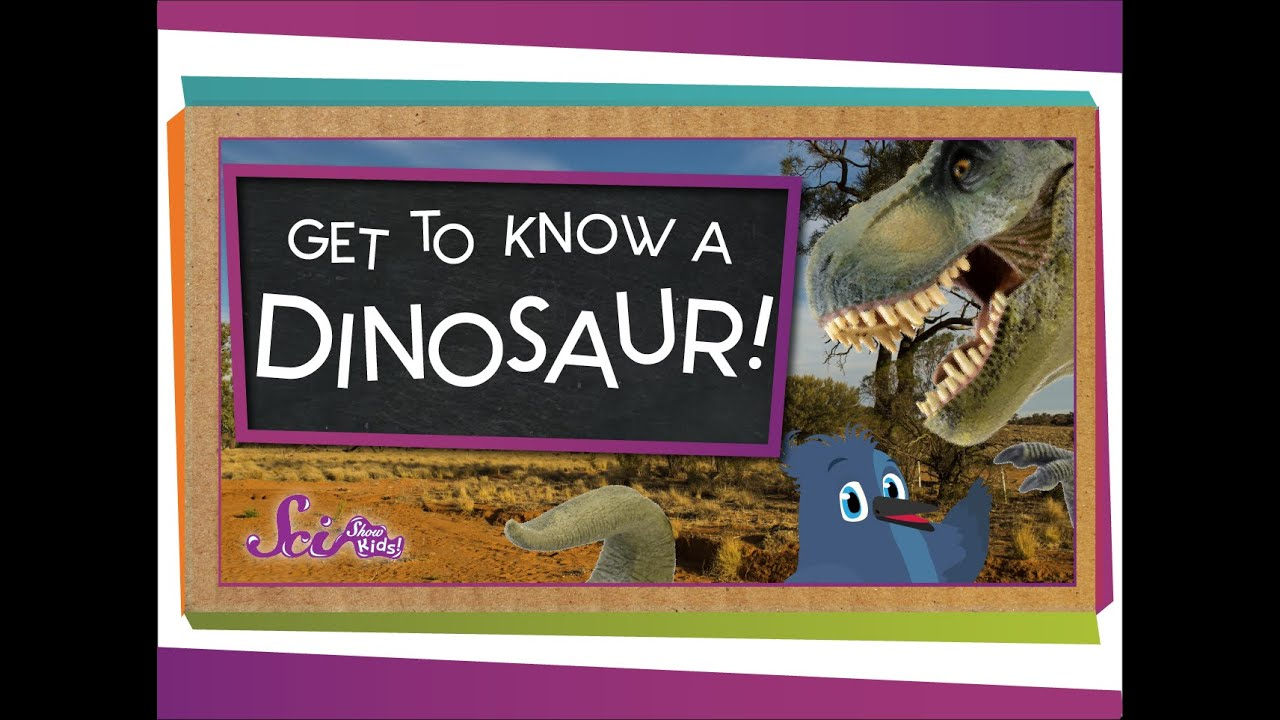 hight resolution of Dinosaurs   TheSchoolRun