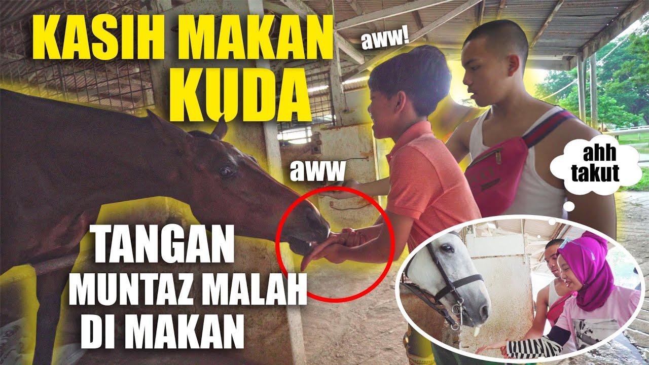 Lagi Belajar Naik Kuda, TIBA2 KUDANYA NGAMUK NYERANG FATEH & SAAIH