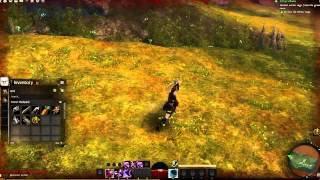 Guild Wars 2 Daily: 1,000,000 Views!