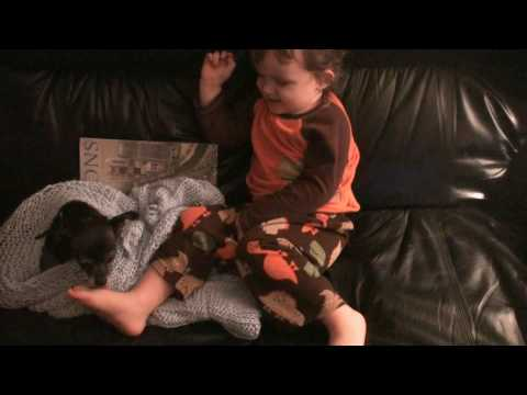 Izzy Licking Kasen's Toes.wmv