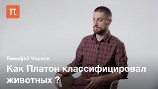 Систематика и вид в биологии — Тимофей Чернов