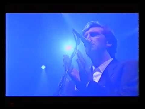Jimmy Nail - Love Don't Live Here Anymore (Live)