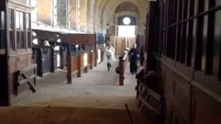 Musée du Cheval - Les Coulisses de Kavallisté