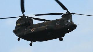 JGSDF CH-47JA(平成29年度 静岡県総合防災訓練)•静岡空港2017.09.03