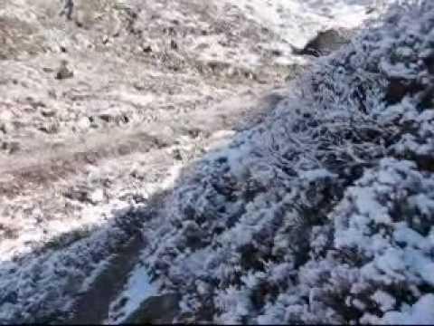 Treking Langtang - april 2010 - Sedmi del