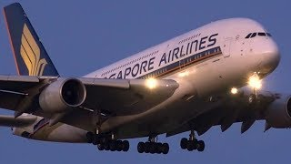 JAWDROPPING Dusk Arrivals | B777 A330 A380 | Melbourne Airport Plane Spotting