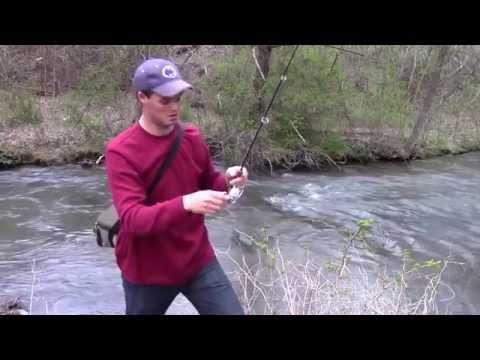 PA Small Stream Trout Fishing
