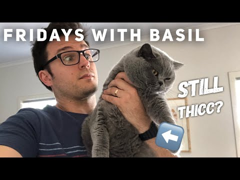 Basils Lost Weight  - Fridays with Basil