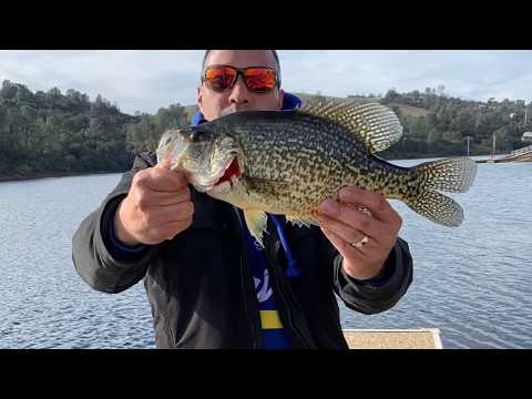 Lake Tulloch Slab & Trout Fishing