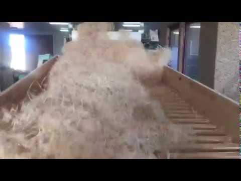 dřevitá vlna Kalafut