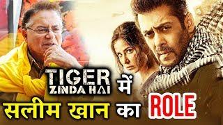 Tiger Zinda Hai में Salman के पिता Salim Khan का क्या है रोल - जानिये
