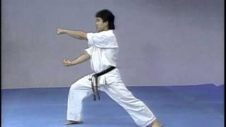 Kyokushin Kata