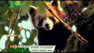 Animal Planet  Yeh Mera India Promo_360p)