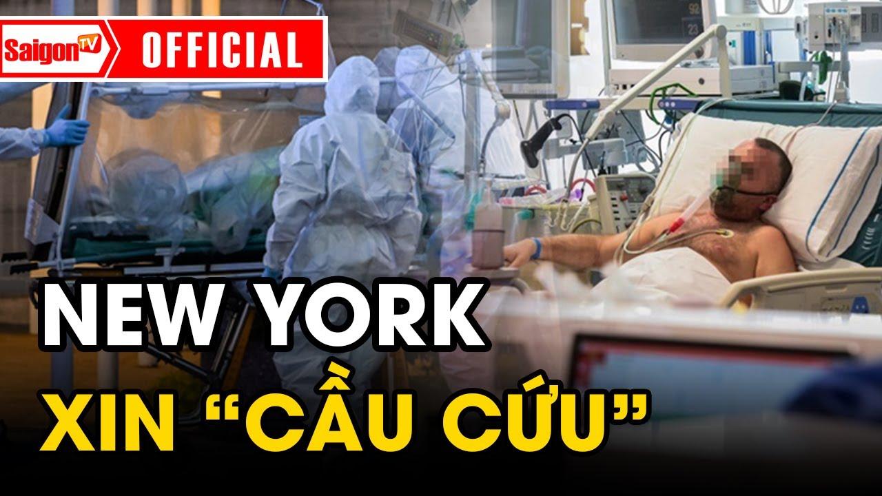New York khủng hoảng xin 'CẦU CỨU' | Tình hình Covid-19 thế giới mới nhất hôm nay