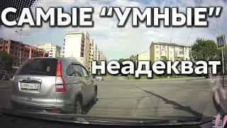 """Подборка САМЫХ """"УМНЫХ"""" водителей #379"""