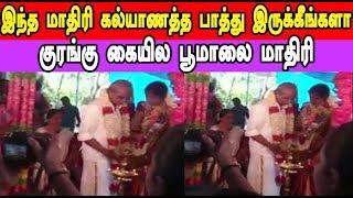 இந்த மாதிரி கல்யாணத்த பாத்து இருக்கீங்களா குரங்கு கையில பூமாலை மாதிரி | Latest Tamil seithigal