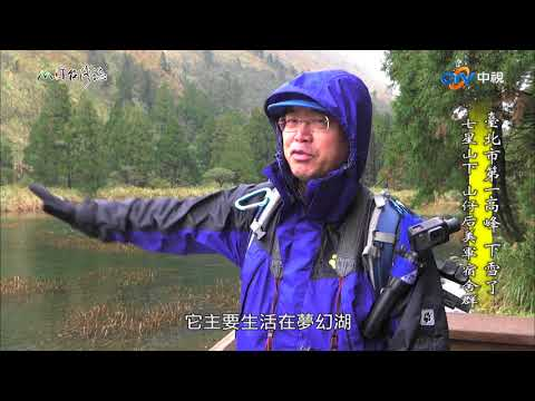 台灣-MIT台灣誌-EP 0822-臺北市第一高峰 下雪了 七星山下 山仔后美軍宿舍群