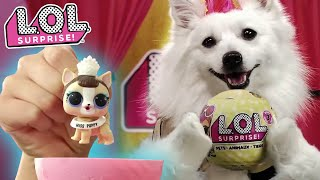 LOL Surprise! | Series 3 Pets | :30 Commercial