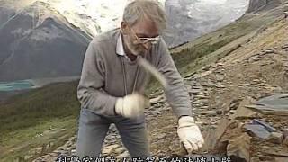 柏吉斯頁岩 Burgess shale