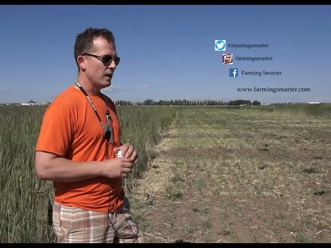 Integrated Nutrient Management - Farming Smarter