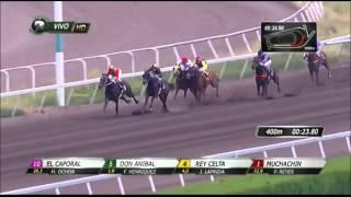Vidéo de la course PMU PREMIO SALANGUITO