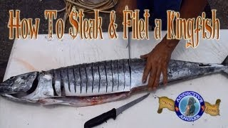 How To Steak and Filet a Kingfish - Fishing How-To