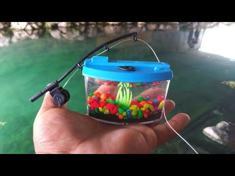 BEST MICRO Fishing Challenge With WORLD'S SMALLEST Rod And AQUARIUM!!! (Help Identify)