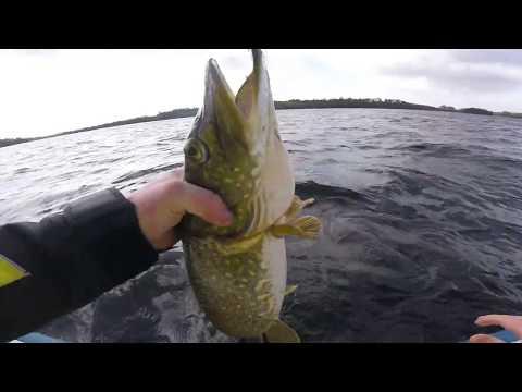 Pike Fishing On Lough Sheelin,Shimano Stella