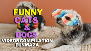 Funny Dogs and Cats Videos Compilation    Try Not to Laugh    FunMaza