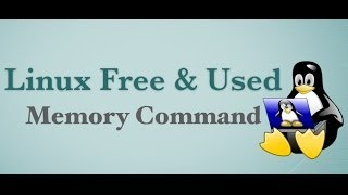 5 Linux Commands: To See Amount Of Free and Used Memory