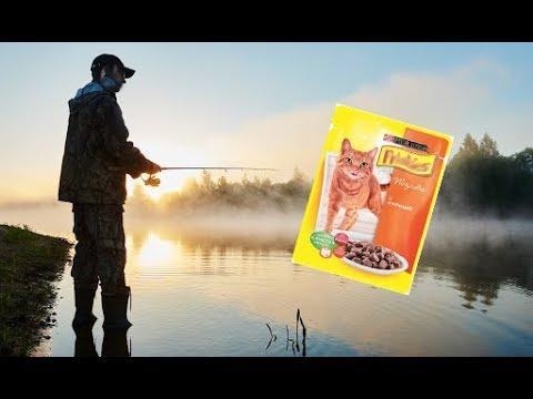 Кошачий корм для рыбалки лучшая прикормка Честный отзыв про добавку в прикормку для рыбалки