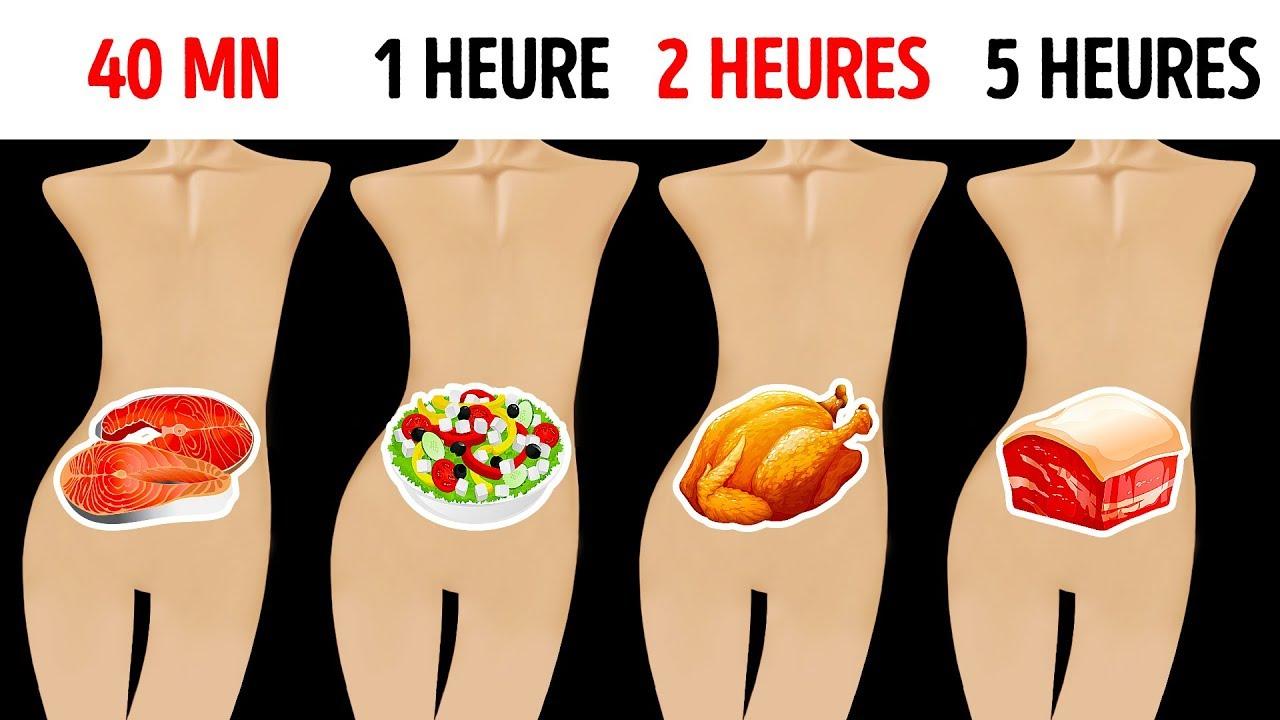 nourriture pour perdre la graisse de l estomac