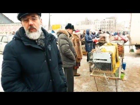 Телефоны УСБ ГИБДД, УСБ МВД РФ