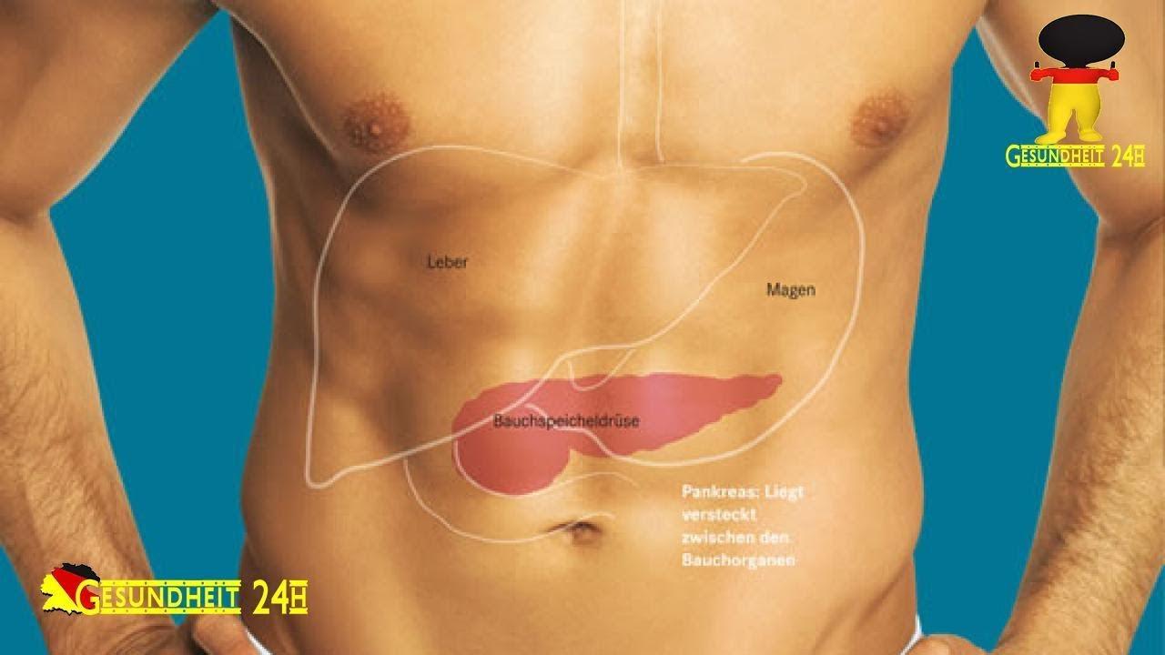 Ziemlich Wo Der Bauchspeicheldrüse Bilder - Menschliche Anatomie ...