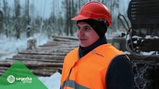 Представляем лесные профессии - оператор харвестера и форвардера
