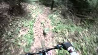 VTT - Gard Lanuéjols - Bois de la Foux vers Aiguebonne