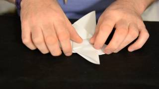 How To Make A Small, Quarter-sized Origami Dove : Origami Tips