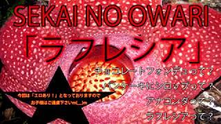 「ラフレシア」SEKAI NO OWARIが伝えたいメッセージ
