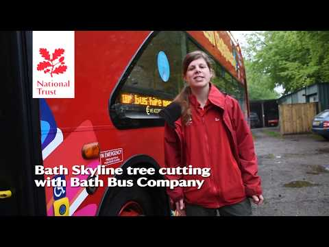 Cutting the Bath Skyline trees from the top of a City Sightseeing bus
