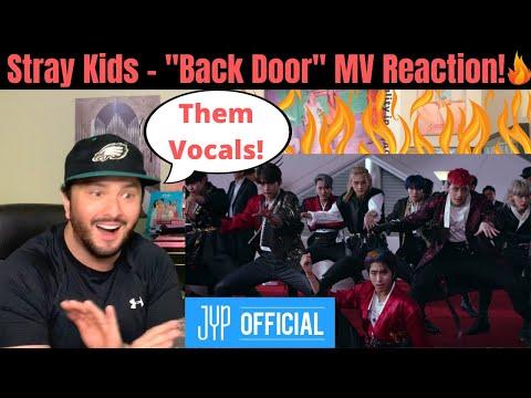 "STRAY KIDS - ""Back Door"" MV Reaction! (Them Vocals Hit!)"