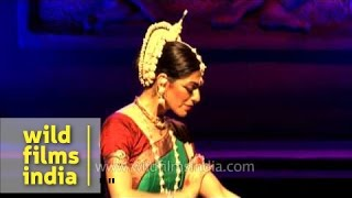 Gambar cover Anandini Dasi from Argentina performs Odissi dance form - Delhi