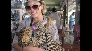 K-TOWN CHANGalangs Feed Baby Leopards & Ride Elephants in Thailand